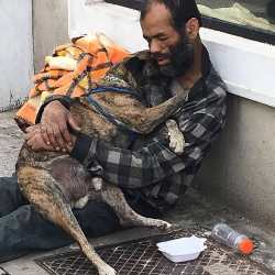 Humans can leave you in your bad time but your dog will always be with you Human can leave you i ...
