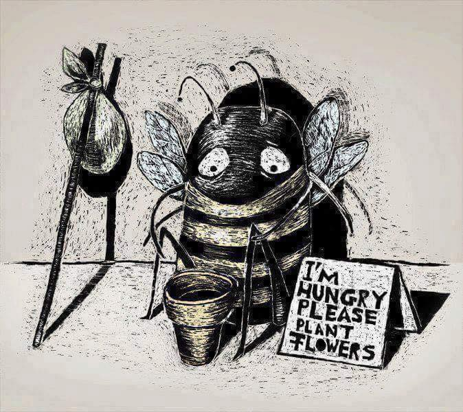 If the bee disappeared off the surface of the globe then man would only have four years of life  ...