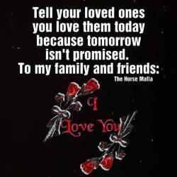 I Love You-The Horse Mafia®