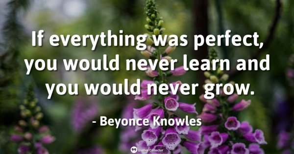 If everything was perfect, you would never learn and you would never grow. – Beyonce Knowles