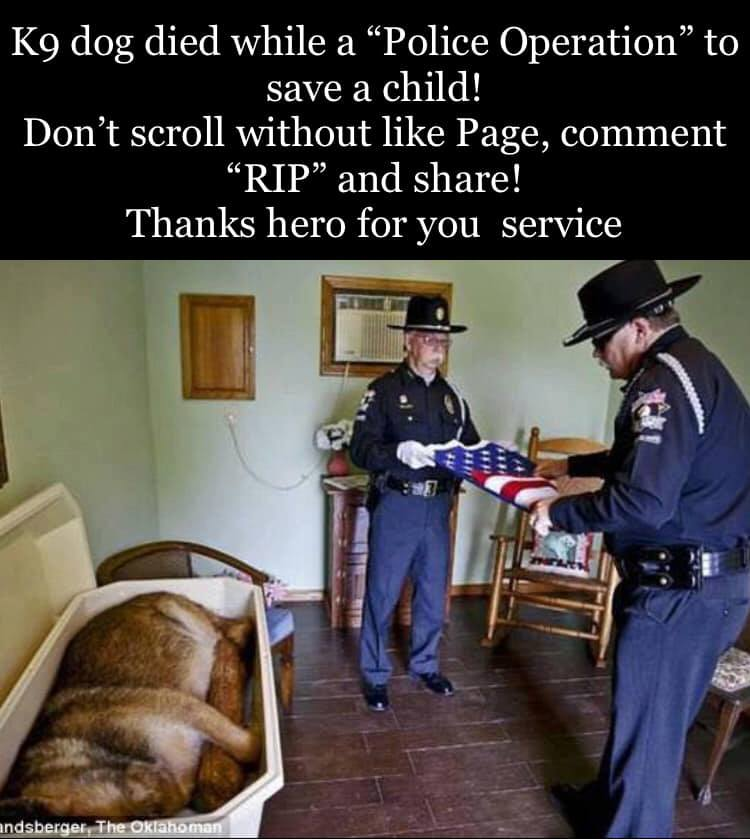 K9 dog died while a police operation to save a child! Don't scroll without like page, comm ...