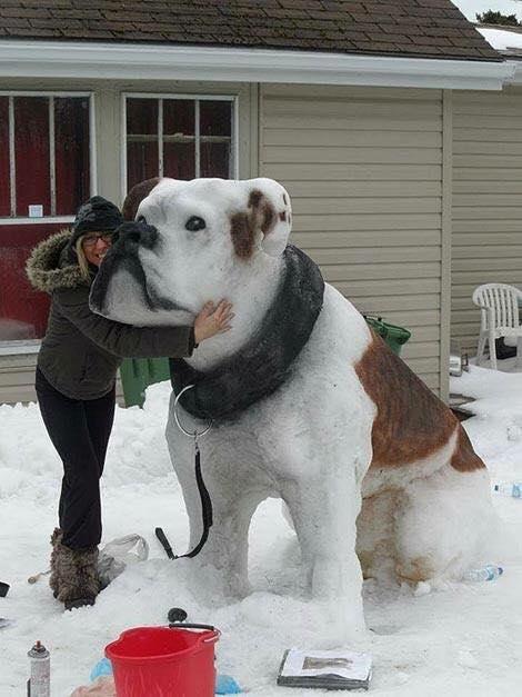 Masterpiece: dog made of snow ღღ