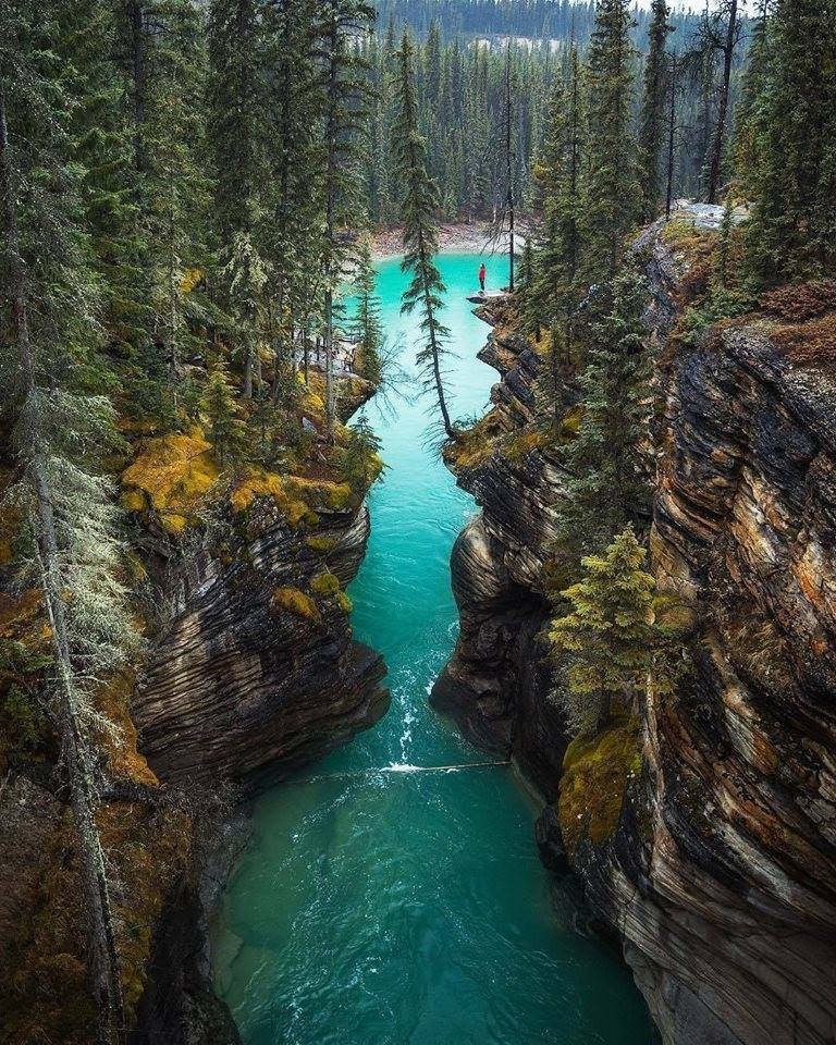 That famous view at Athabasca Falls is just something else   Athabasca Falls, Alberta, Canada Th ...