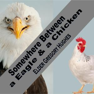 Somewherebetweeneagleandchickengraphic