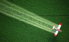 Glyphosate Spraying Fields
