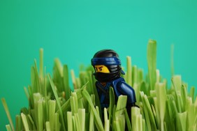 The original Jay photo used in this LEGO-fied project.