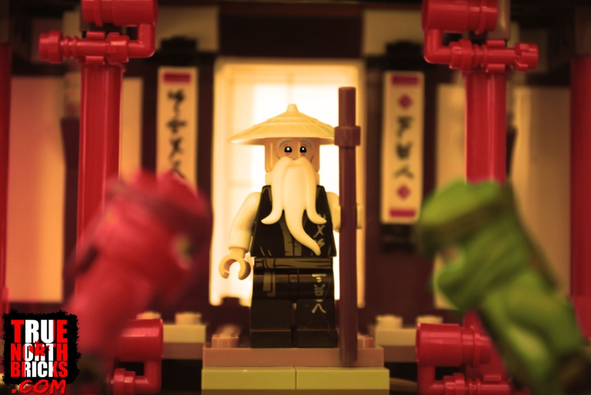 Sensei Wu in the Monastery of Spinjitzu