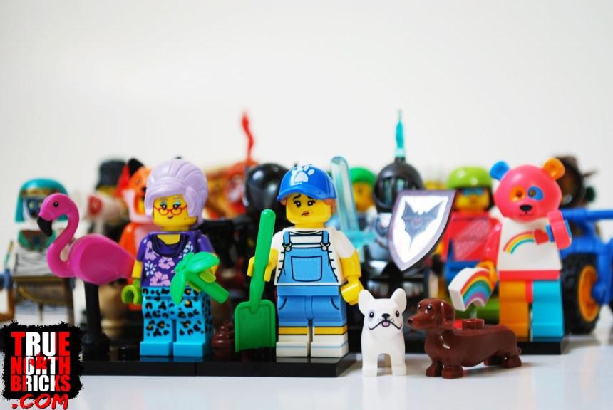 Minifigures Series 19