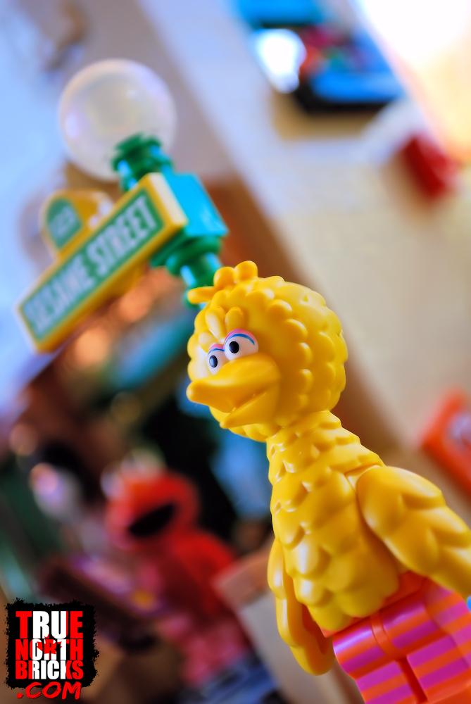 Big Bird from Sesame Street (21324)