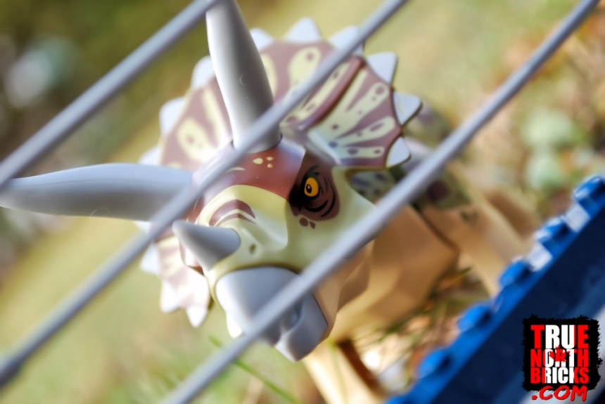 Triceratops Rampage (75937) includes an amazing Triceratops!