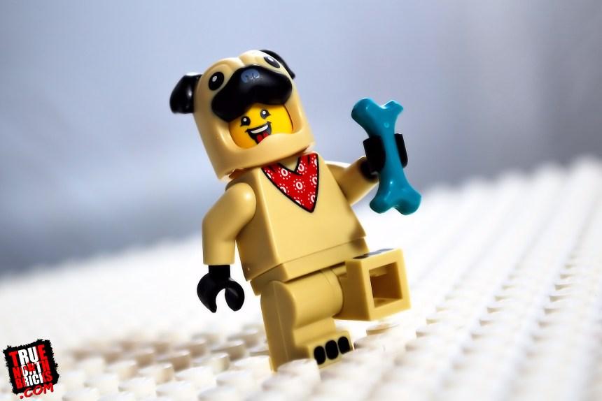 Pug Costume Guy