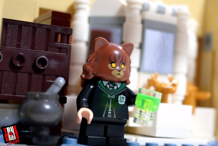 Cat-Hermione from Polyjuice Potion Mistake.