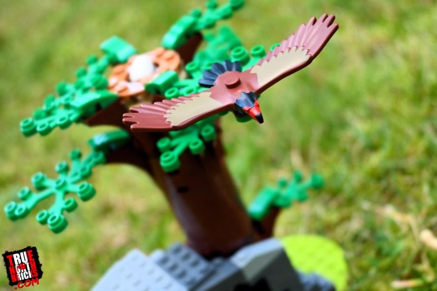 Wildlife Rescue Camp (60307) eagle
