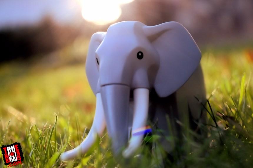 Wildlife Rescue Camp (60307) elephant