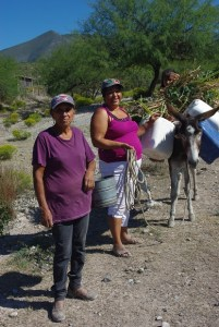 Part of the fun of traveling in Mexico are the people we meet along the road.