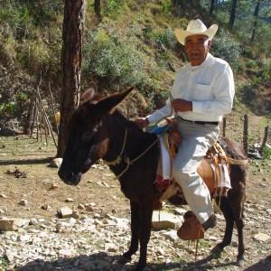 Pastor Santiago rode his donkey.