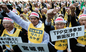 Mass protests in Japan, the second largest economy in the TPP bloc are under pressure by the US to open up its agricultural and automotive sectors.
