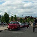 Rancher on horseback lassoes would-be bike bandit in Walmart parking lot