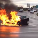 Tesla Model S bursts into flames during test drive