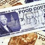 Food Stamp Craze: U.S. Spends $3.6 Billion to Give $70 Billion in Benefits