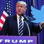 It's time to ditch your Twitter account, Americans tell The Donald
