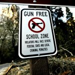 Legislation Introduced in Florida to End Gun-Free Zones at Airports