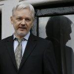 WikiLeaks founder: Obama admin trying to 'delegitimize' Trump