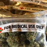 Poll finds that majority of police would like to see marijuana legalized for medicinal use