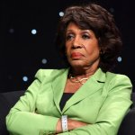 Maxine Waters: 'I don't respect this president'