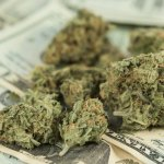 Legal Weed Could Save Medicaid More Than $1 Billion
