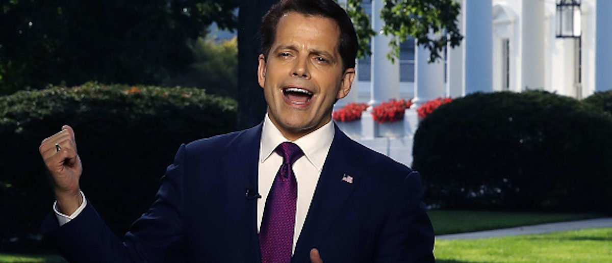Mooch Pranked By White House Emails
