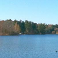 cropped-november_lakescape_looking_northwest.jpg