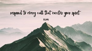 Respond to every call that excites your spirit! -rumi