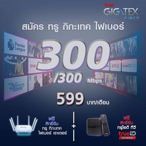 tol-promotion-300-300mbps-599