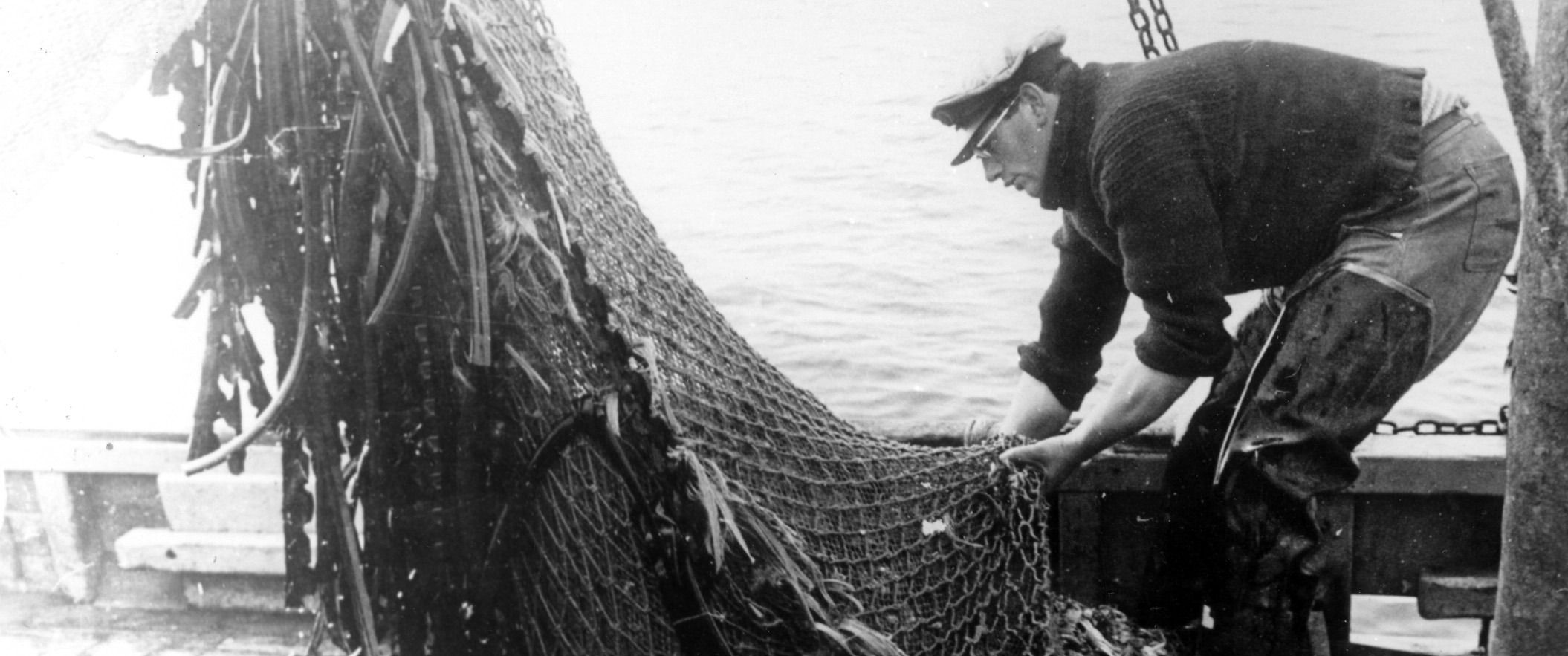 Emptying the fishing net