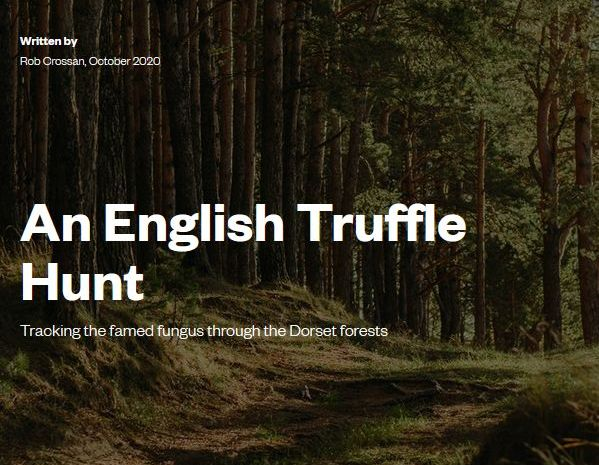 american-express-magazine-showcases-our-truffle-hunting-experience-days.
