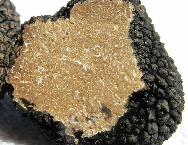 english-summer-truffles-available-now