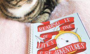 How To Read More: Being A Busy Reader & Making Time To Read