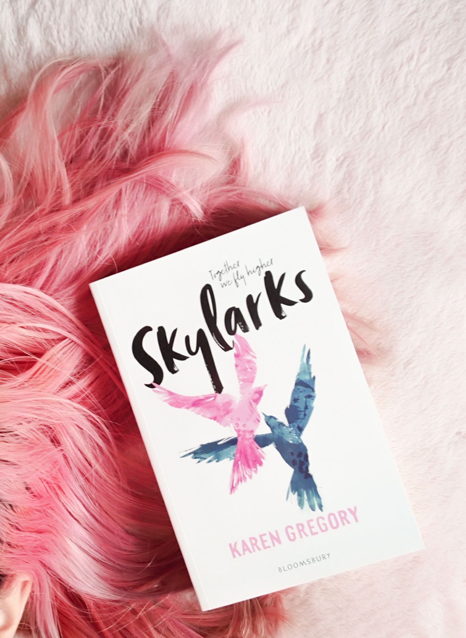 Skylarks Book Review