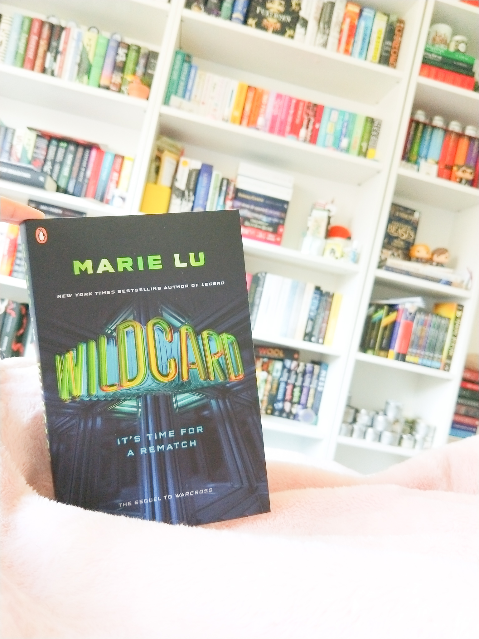 Wildcard Book Review
