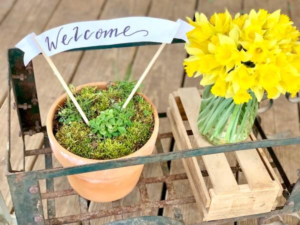farmhouse decor, daffodils, front porch