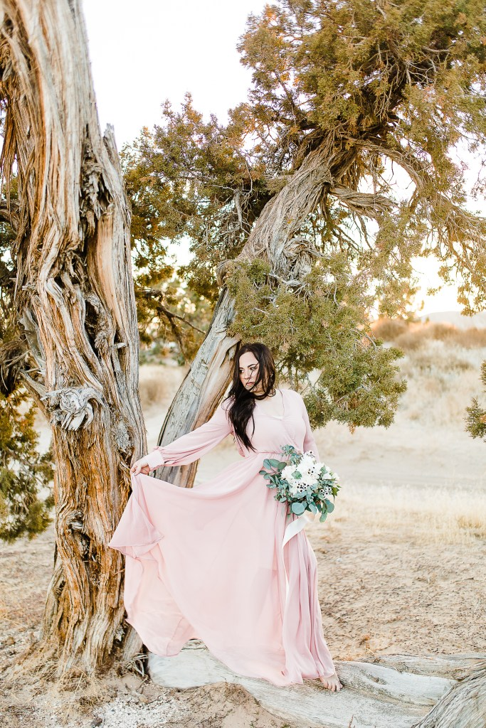 Little Sahara Bridals | Utah Wedding Photographer