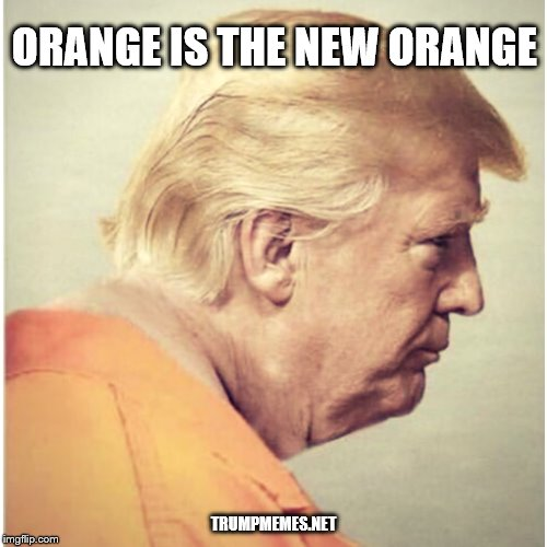 "Trump poses for a prison profile shot in this ""Orange Is the New Orange"" Trump meme"