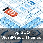 Top SEO WordPress Themes