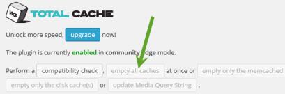WordPress cache deletion