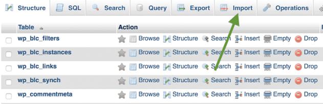 Importing the WordPress database