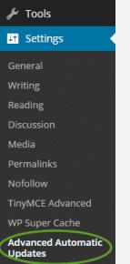 Setting Automatic WordPress Updates