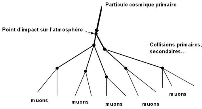 rayons cosmiques rayon cosmique particules secondaires muons gerbe représentation simplifié