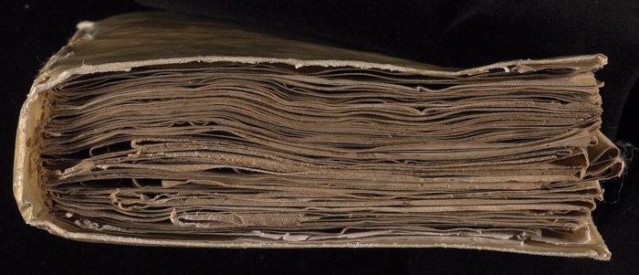 manuscrit voynich découverte ia intelligence artificielle décryptage