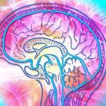 La thérapie à la psilocybine serait au moins aussi efficace que les antidépresseurs conventionnels